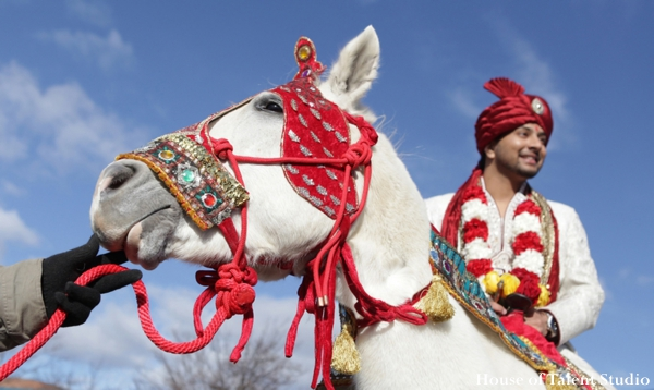 indian wedding groom baraat white horse traditional