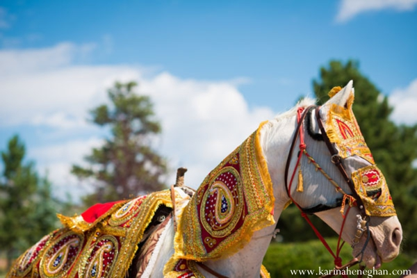 Indian-wedding-baraat-horse
