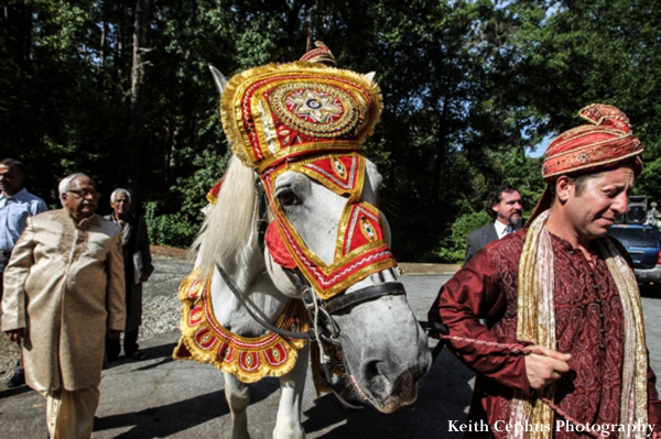 Indian-wedding-baraat-horse-guests