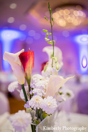 Indian wedding reception decor white in Palm Harbor, Florida Indian Wedding by Kimberly Photography