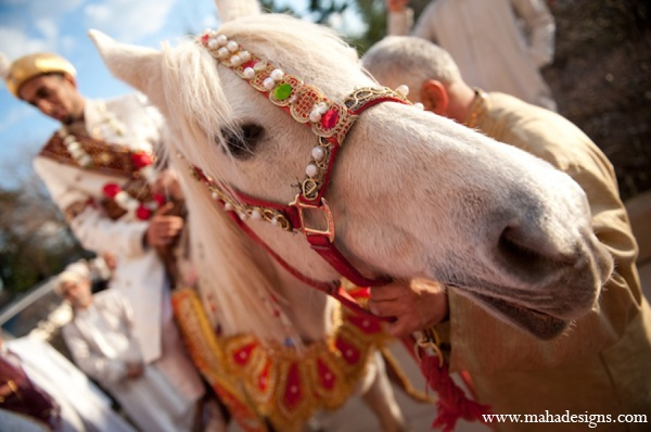 Pakistani horse baraat in Chicago, Illinois Pakistani Wedding by Maha Designs