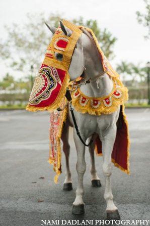 Indian wedding baraat horse in Coral Springs, Florida Indian Wedding by Nami Dadlani Photography