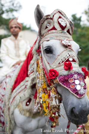 Indian-wedding-baraat-groom-horse
