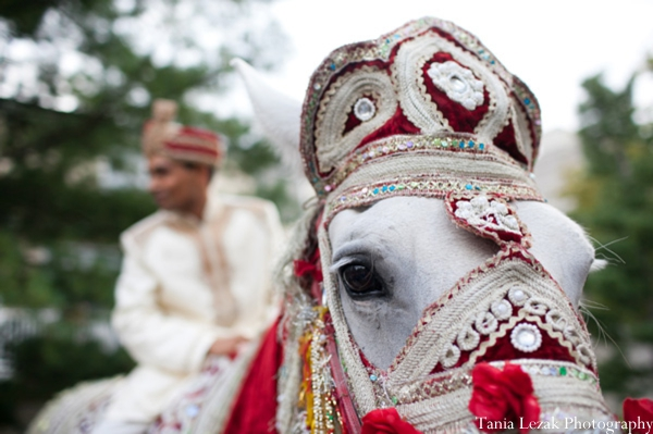 Indian-wedding-ceremony-baraat-groom-horse