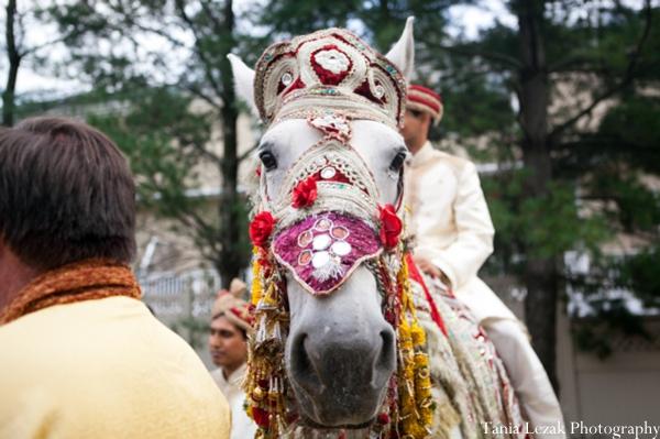 Indian-wedding-ceremony-baraat-horse-groom