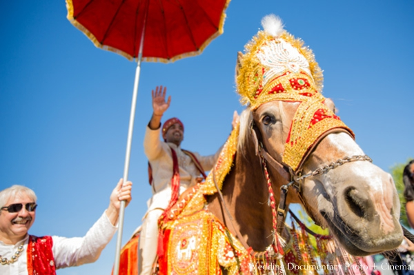 Indian-wedding-baraat-tradtional-white-horse