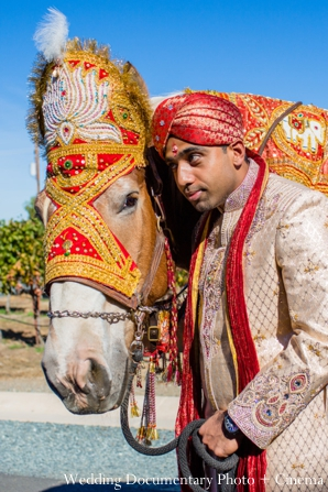 Indian-wedding-groom-horse-baraat-tradtional