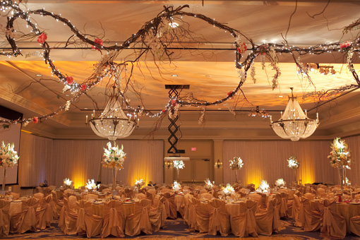 Indian wedding reception 2