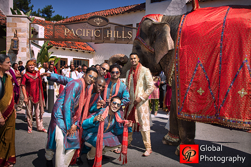 Indian wedding, blue groomsman, elephant