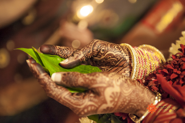 Mehndi Ceremony Mp : Northern california indian wedding by mp singh photography