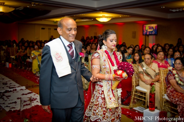 Indian bride in red and gold bridal lengha hits the aisle to her indian wedding.