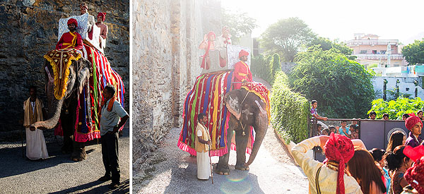 The groom arrives to his Indian wedding upon a decorated elephant.