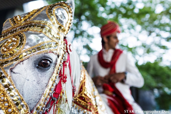Indian wedding baraat with white horse.