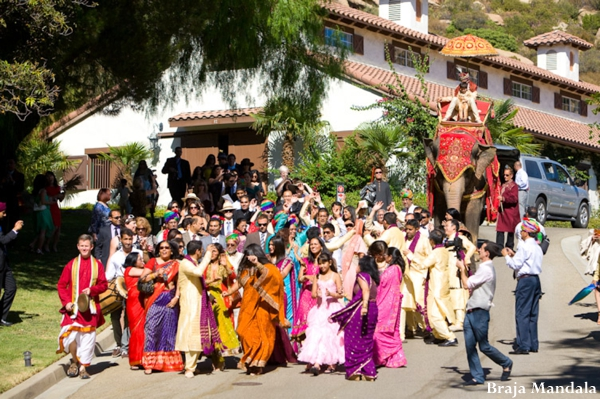 indian-wedding-colorful-baraat-elephant
